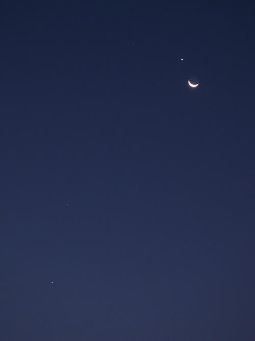 今朝の月.jpg