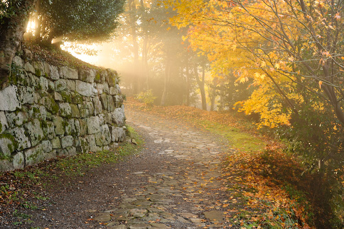 石垣の道.jpg