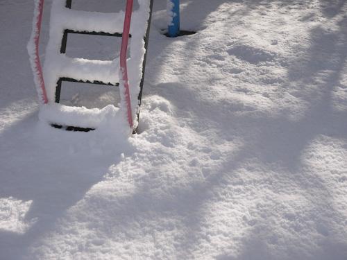 雪の朝.jpg