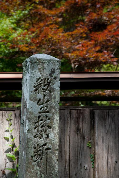 鳳来寺石畳1.jpg