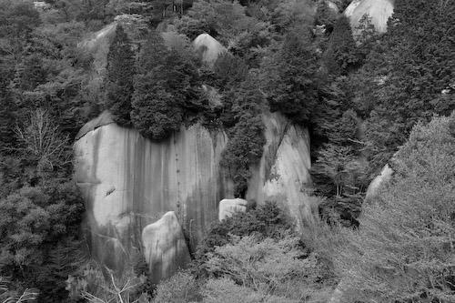 岩にはね返る鳥のさえずり.jpg