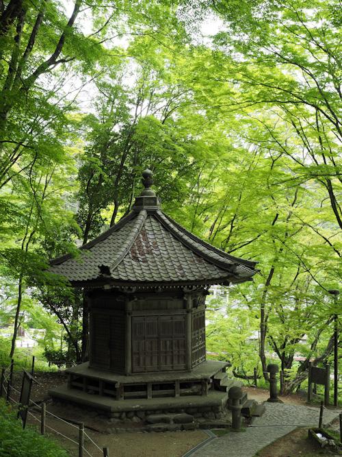 緑の中の太子堂.jpg