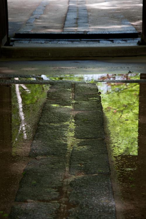 雨上がりの山門.jpg